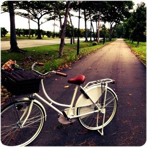 dutch bike in white