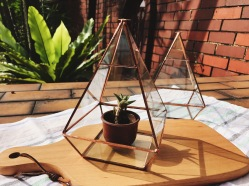 Brass pyramid hanging terrarium / glass geometric planter (S$40)