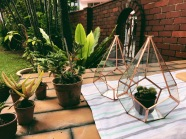 Brass diamond geometric hanging terrarium / glass hexagonal planter (S$40)